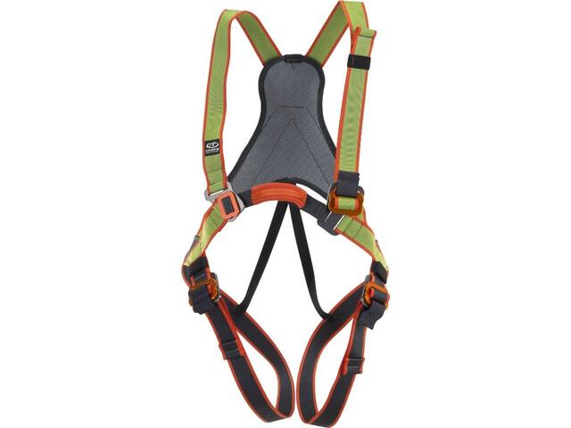 Climbing Technology Jungle Full Body Harness Kinder green/grey